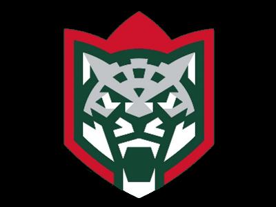 Логотип Ак Барс