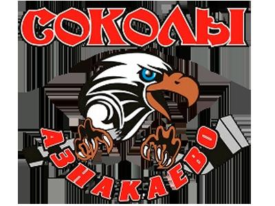 Логотип Соколы
