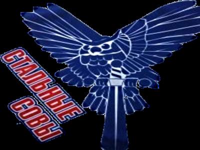 Логотип Стальные совы