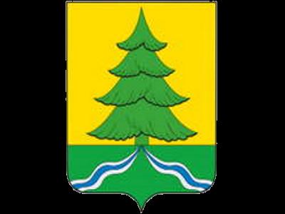 Логотип Тимерхан