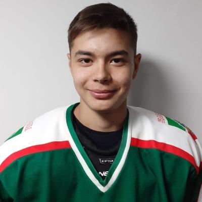 Арсланов Ильдан